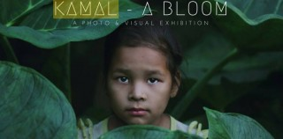 Kamal: A Photo & Visual Exhibition
